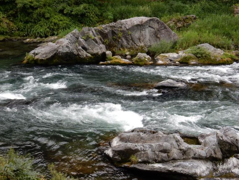迫力の多摩川